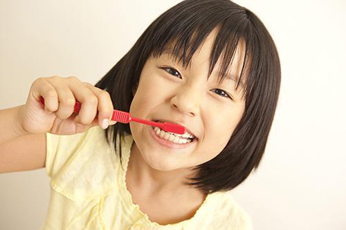 6歳臼歯(第一大臼歯)